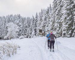 Ski de fond Pyrénées: comment le pratiquer